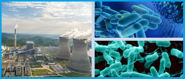 cooling-tower-biocide-chemical
